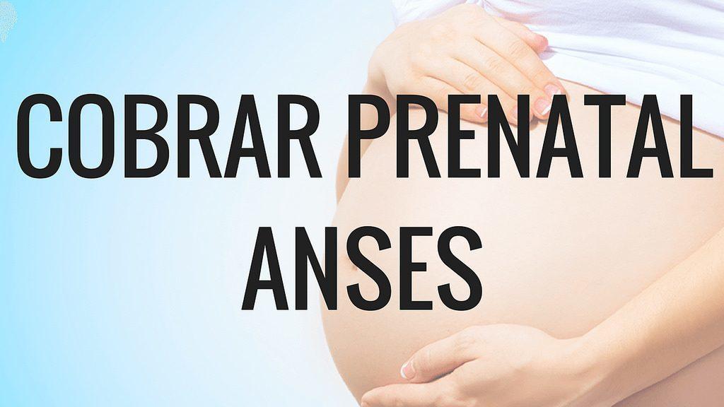 Asignación Familiar por Prenatal